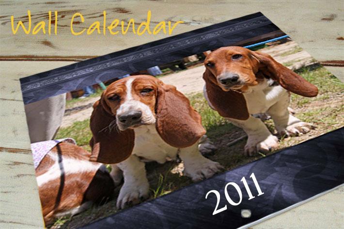 10x10 Wall Calendar