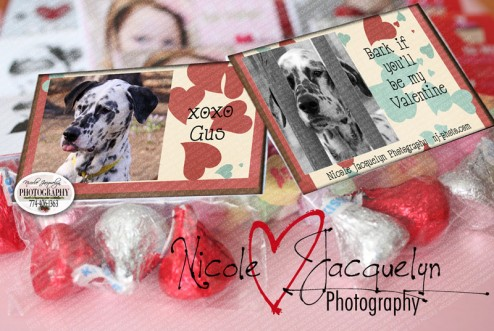 ValentineGoddieBag-Bark-If.