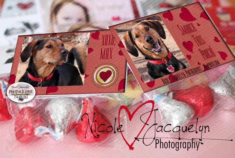 wm-ValentineGoddieBag-Smooc
